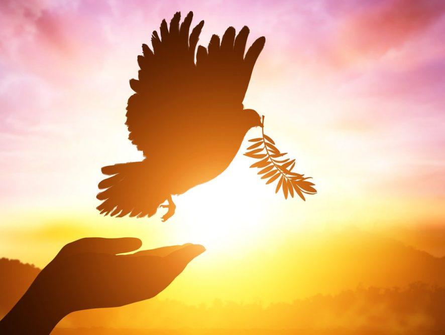Come ritrovare se stessi attraverso un cammino spirituale
